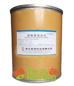 kháng sinh Ciprofloxacin