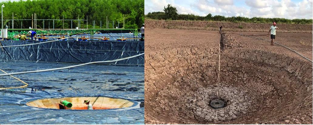 Xi phong đáy ao hồ – Phương pháp loại bỏ chất thải ao nuôi hiệu quả